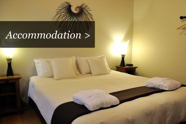 Luxury Accommodation Golden Bay