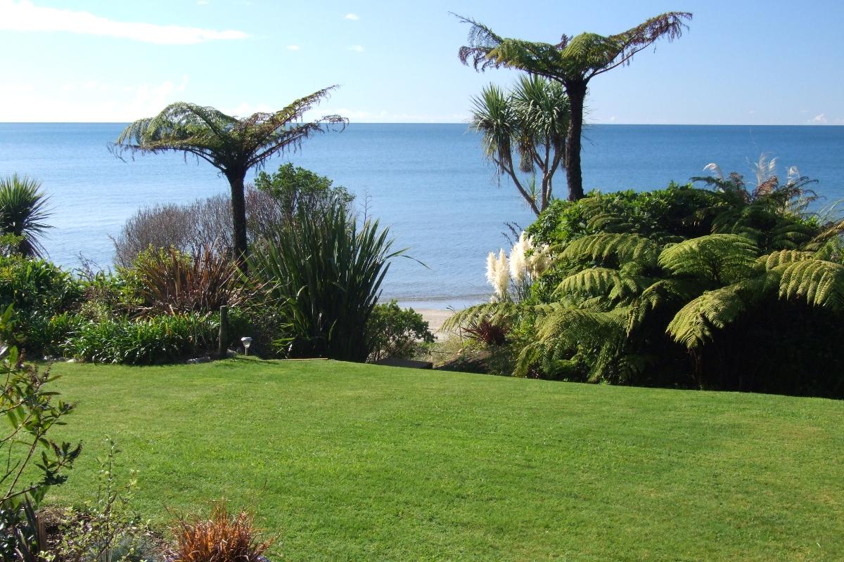View from Beachfront Studio | Adrift in Golden Bay