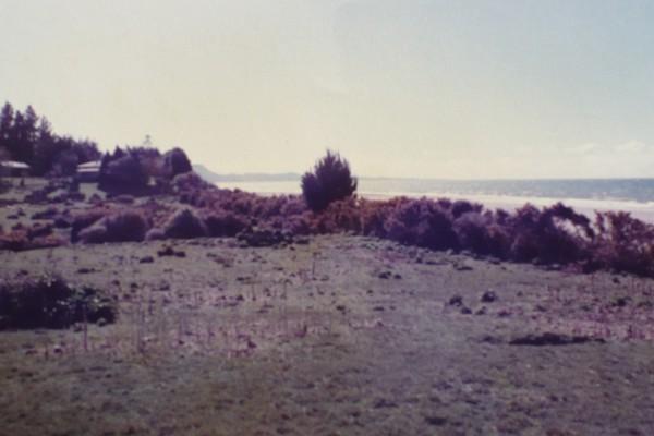 Adrift 1984